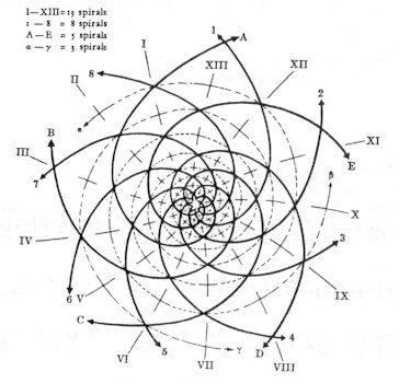 Do We Need Our Chakras together with Connection Between Sirius And Human History furthermore Customer case study c in addition Ch2 in addition Kepler Model Of The Solar System. on star geometry diagram